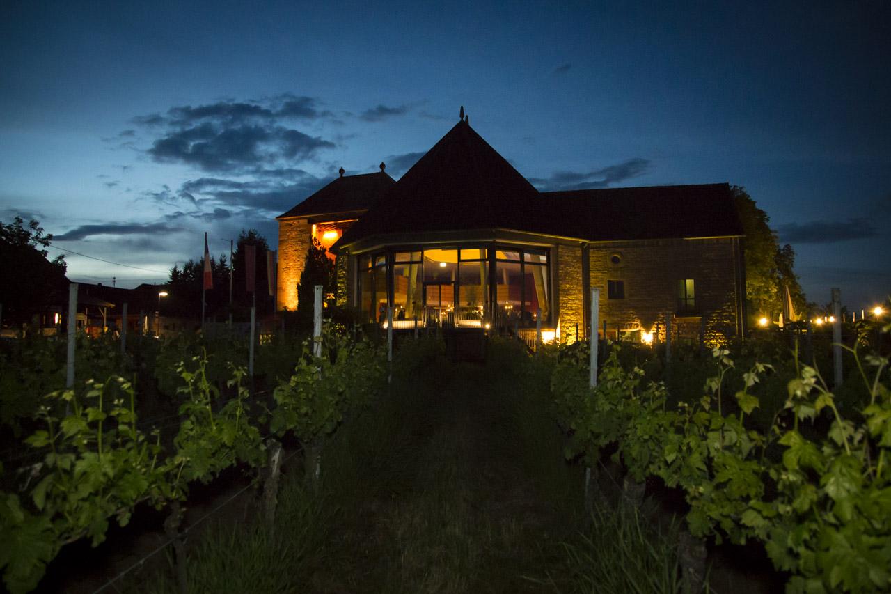 Hochzeit in der Location Deutsches Weintor